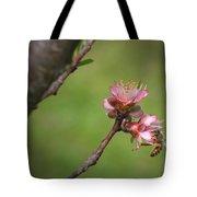 Bee On Peach Bloom Tote Bag