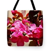 Bee On Pink Blossoms 031015aa Tote Bag