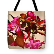 Bee On Pink Blossoms 031015ac Tote Bag