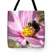 Bee On Pink Cosmos Tote Bag
