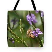 Bee On Purple Loosestrife  Tote Bag