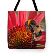 Bee On Red Coneflower 2 Tote Bag