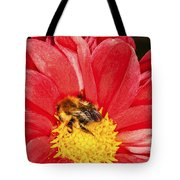 Bee On Red Dahlia Tote Bag