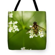 Bee On Top Of The Flower - Featured 3 Tote Bag
