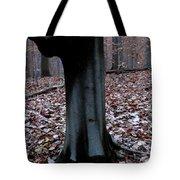 Beech Burl Tote Bag