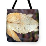 Beech Leaf In Winter Tote Bag