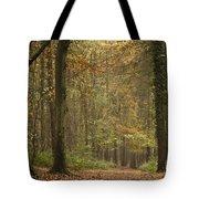 Beech Wood Walk Tote Bag