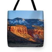 Beef Basin - Utah Landscape Tote Bag