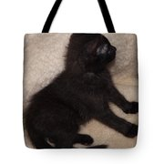 Beethoven Sitting Tote Bag