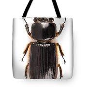 Beetle Aceraius Grandis Tote Bag