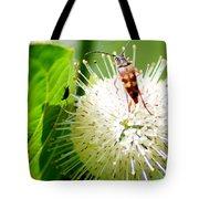 Beetle On Buttonbush Tote Bag