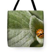 Beetle Pad Tote Bag