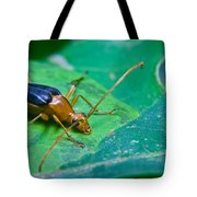 Beetle Sneeking Around Tote Bag