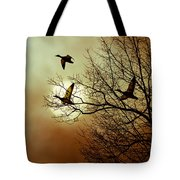 Before A Winter Sky Tote Bag