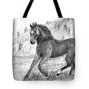 Before The West Was Won Tote Bag