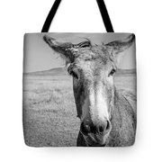 Begging Burro Tote Bag