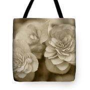 Begonias In Sepia Tote Bag
