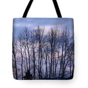 Beguiling Beauty Tote Bag