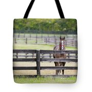 Behind Bars Tote Bag