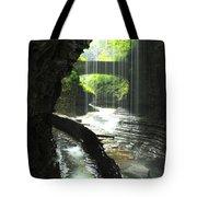 Behind Rainbow Falls Tote Bag