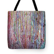 Behind The Curtains Tote Bag