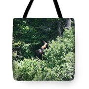Behind The Shrubs Tote Bag