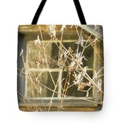 Beige Window At The End Of Winter Tote Bag