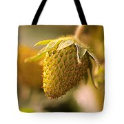 Being Young And Green Tote Bag