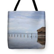 Belize Tote Bag
