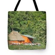 Belize House Tote Bag