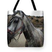 Bella On The Ranch Almanzora Mountain Spain  Tote Bag