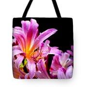 Belladonna Lilies Tote Bag