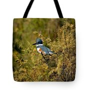 Belted Kingfisher Female Tote Bag