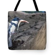 Belted Kingfisher With Prey Tote Bag