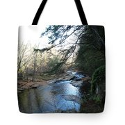 Belvidere Junction Stream Vermont Tote Bag
