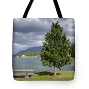 Bench And Tree Tote Bag