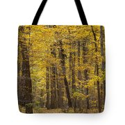 Bench In Fall Color Tote Bag