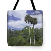 Benched At Rainbow Springs Campground Tote Bag