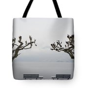Benches And A Trees Tote Bag