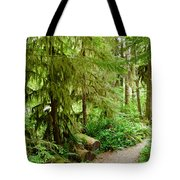 Bend In The Rainforest Tote Bag