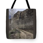 Bend In The Road - Waterfalls Tote Bag