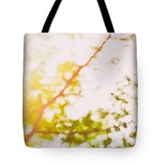 Beneath A Tree  14 5199  Diptych  Set 2 Of 2 Tote Bag by Ulrich Schade