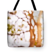 Beneath A Tree 14 5286 Triptych Set 1 Of 3 Tote Bag by Ulrich Schade