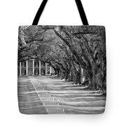 Beneath Live Oaks Bw Tote Bag by Steve Harrington