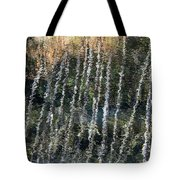 Beneath The Reflection Tote Bag