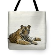 Bengal Tiger Cub On Road Bandhavgarh Np Tote Bag