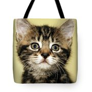 Benny The Pussy Cat Tote Bag