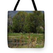 Benson Pond Tote Bag