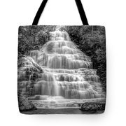 Benton Falls In Black And White Tote Bag