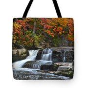 Berea Beauty Tote Bag